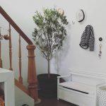 Huisjethuisje - olijfboom - geboorteboom